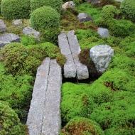 東福寺 お庭
