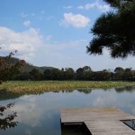 嵐山の大覚寺