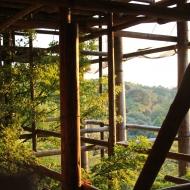 清水寺、工事中でレアな眺め