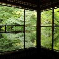 瑠璃光院の例のあの部屋